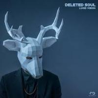 Deleted Soul - Lucid Vision