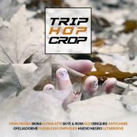 AA.VV. - Trip Hop Crop