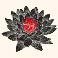 Lotus Titan - Odyssées