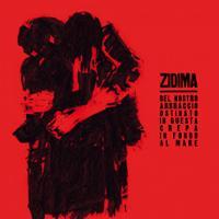 ZiDima - Del Nostro Abbraccio Ostinato In Questa Crepa...