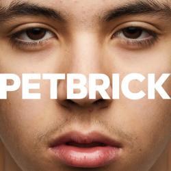 Pet Brick - I